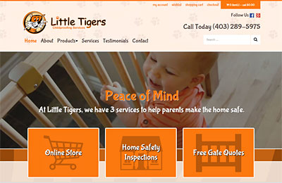 Little Tigers Childproofing